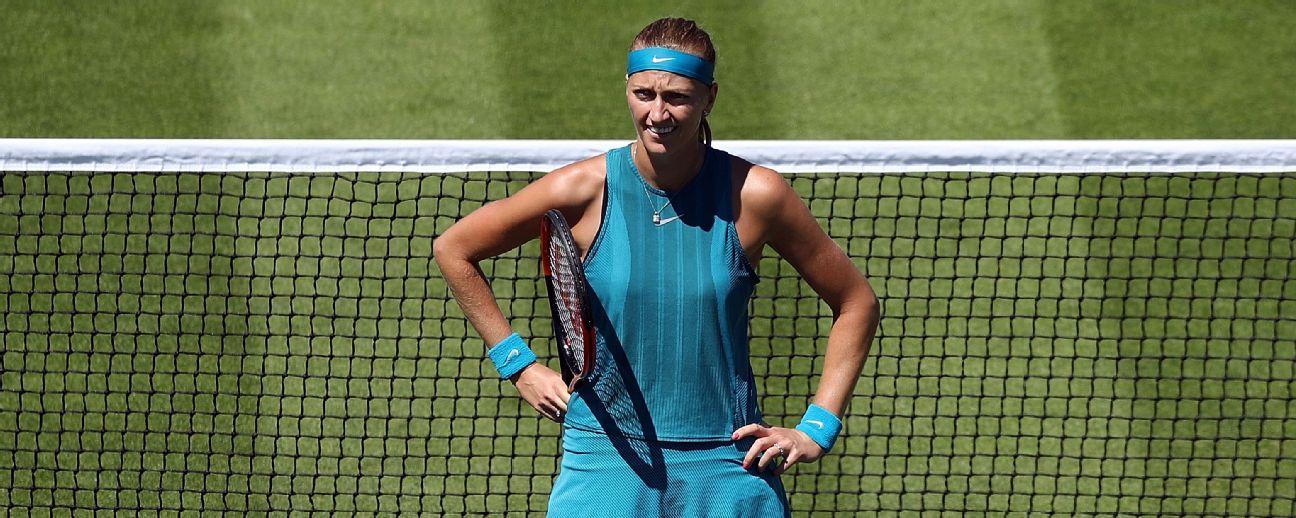 Petra Kvitova was the Wimbledon ladies' singles champion in 2011 and 2014.