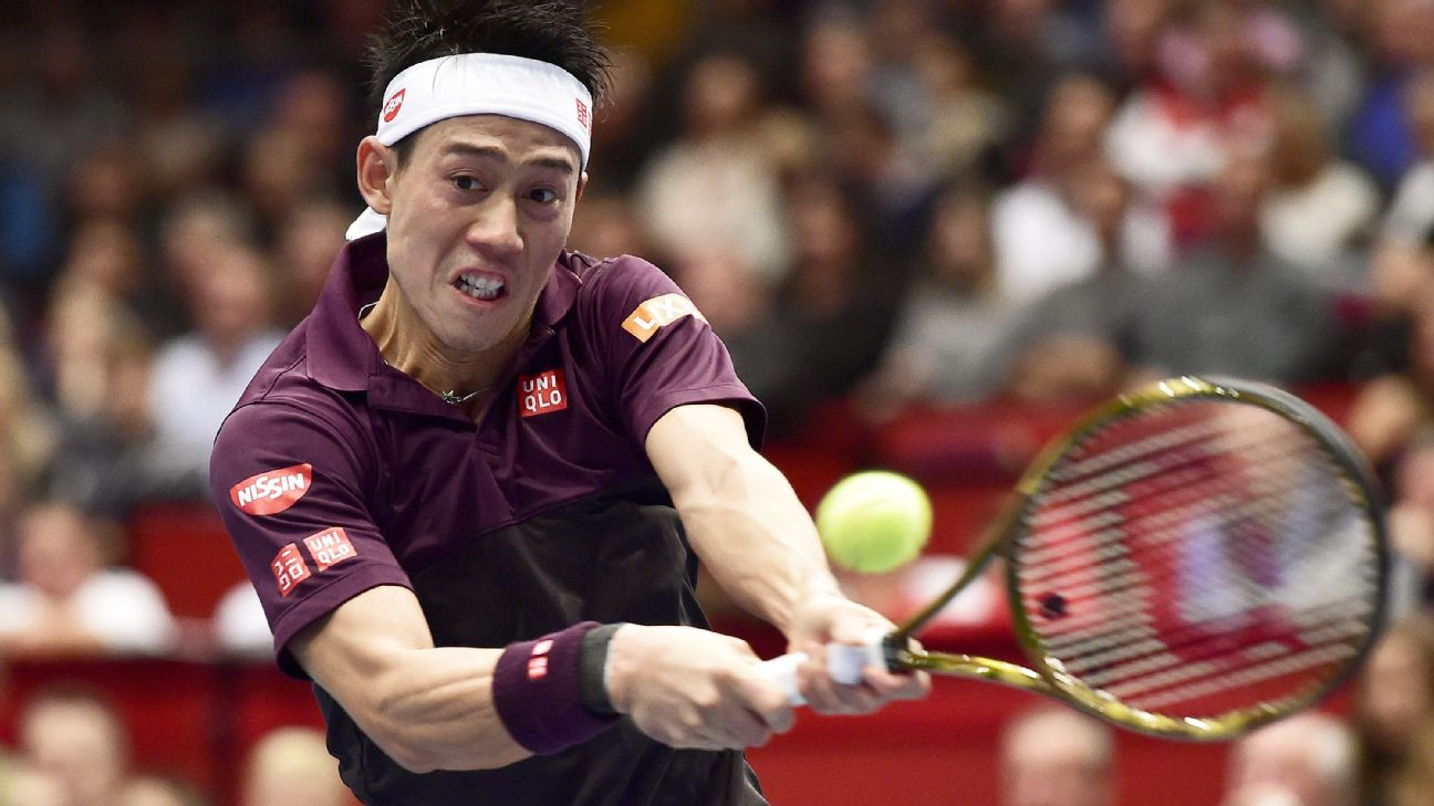 Kei Nishikori will face Kevin Anderson in the final of the Vienna Open after sealing a straight-sets win over Mikhail Kukushkin in the semifinals on Saturday.