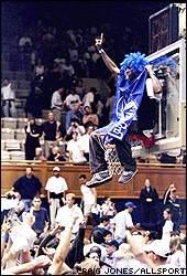 Fan of the Duke Blue Devils