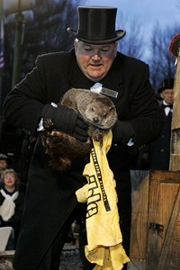 Terrible Towel Groundhog