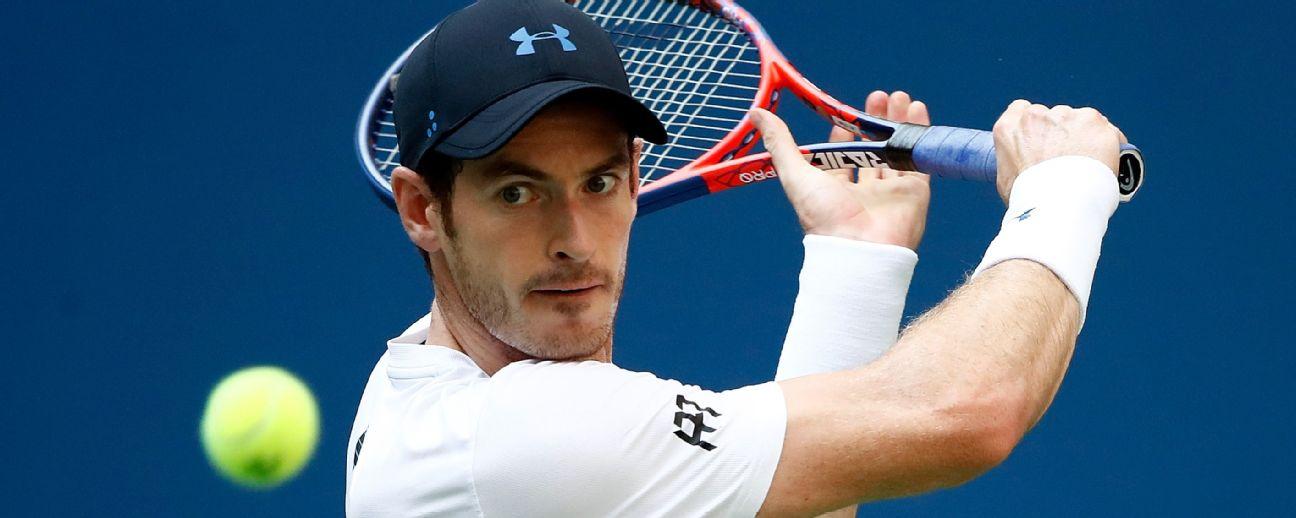 Andy Murray has faced Novak Djokovic in four Australian Open finals Julian Finney/Getty Images