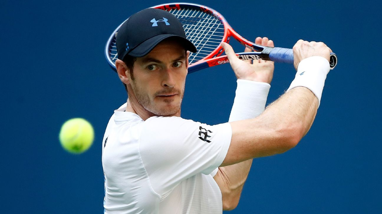 Andy Murray has offered a supportive fan free tickets to his opening match of the Australian Open as an apology for being thrashed by Novak Djokovic on Thursday.