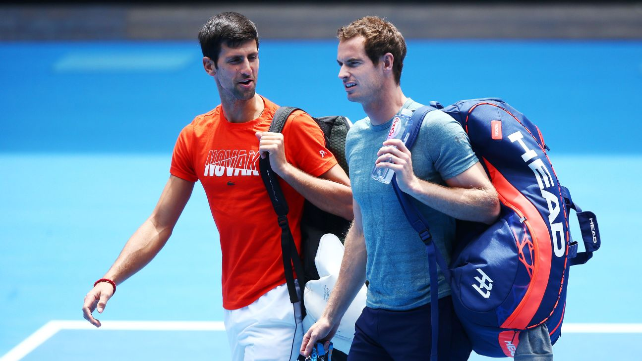"""Novak Djokovic has hailed Andy Murray a """"great champion"""" after learning the Scot is likely to hang up his tennis racquet at the conclusion of 2019's Wimbledon championship."""