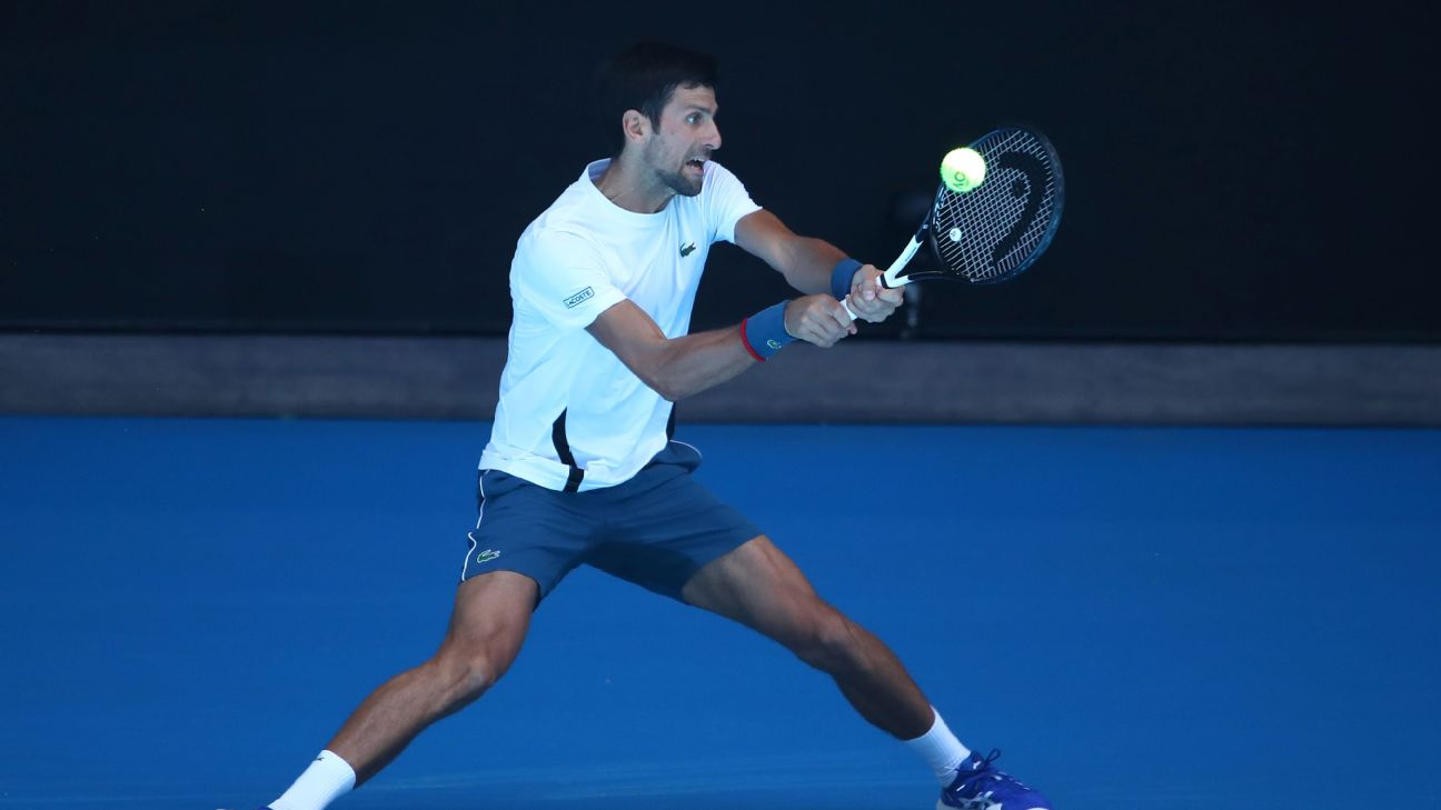 Novak Djokovic of Serbia plays a shot during a practice session ahead of the 2019 Australian Open at Melbourne Park. Scott Barbour/Getty Images