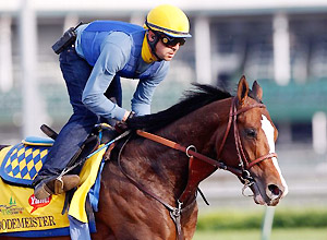 Bodemeister works for the 138th Kentucky Derby