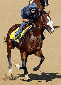 Union Rags works for the 138th Kentucky Derby.