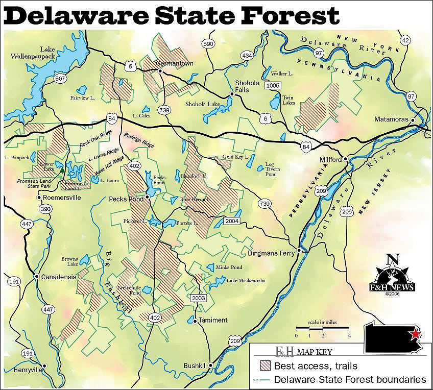 else if (browser == ie && os != mac) { doent.write(' '); } else if Delaware State Forest Map on